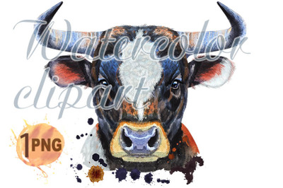 Watercolor illustration of black bull with white spot