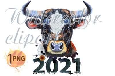 Watercolor illustration of a bull  with number 2021