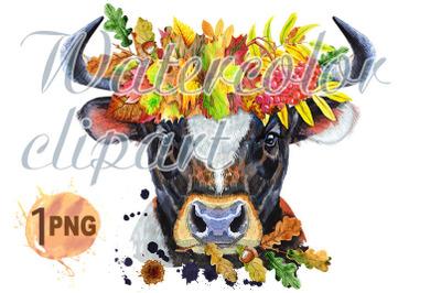 Watercolor illustration of black bull