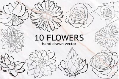 10 hand drawn vector flowers