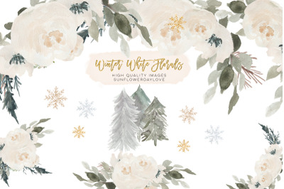 Christmas Winter Snowflake Flowers Clipart