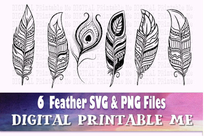 Feather Illustration SVG Bundle, 6 Silhouette PNG, bird quill, Clip Ar