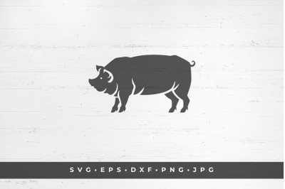Pig icon isolated on white background vector illustration. SVG, PNG, D