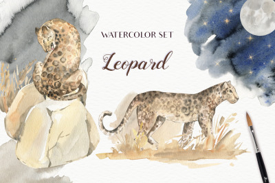 Leopard Watercolor Set