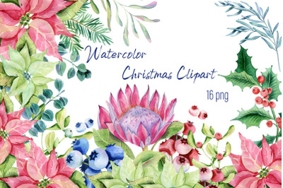 Watercolor Christmas Clipart -  Christmas Plants