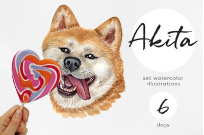 Akita. Watercolor dog illustrations. Cute 6 dog
