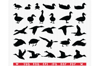 SVG Ducks Duckling, Black silhouettes, Digital clipart