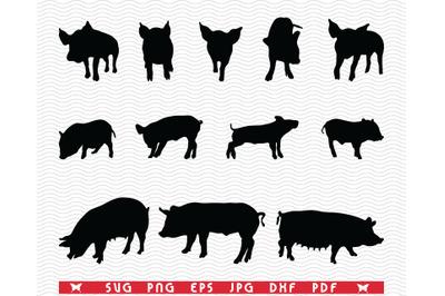 SVG Pigs Piggy Sow, Black silhouettes, Digital clipart