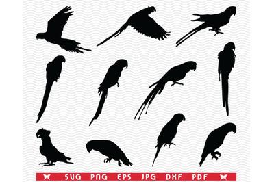 SVG Parrots, Ara, Black silhouettes, Digital clipart