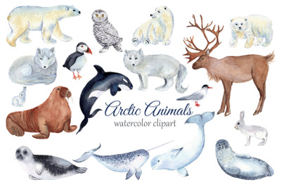 Arctic Animals Watercolor Clipart, Winter Clipart