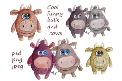 Cool funny Bulls and Cows. Watercolor illustrations and icons.