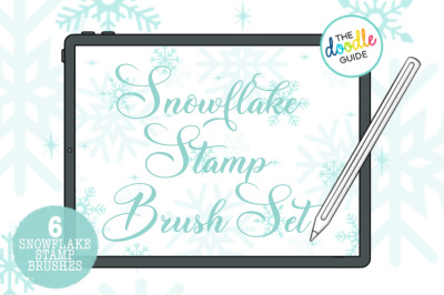 6 Snowflake  Stamp Brushes for Procreate
