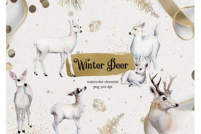 White deer winter watercolor elements.Animals deer watercolor.Christma