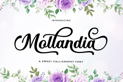 Mollandia