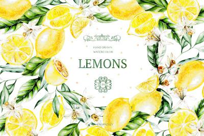 Hand Drawn Watercolor Lemons