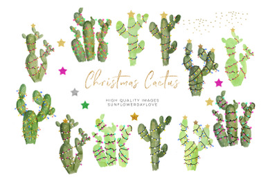 Cactus Christmas clipart, Watercolor holiday clipart, Green Natural