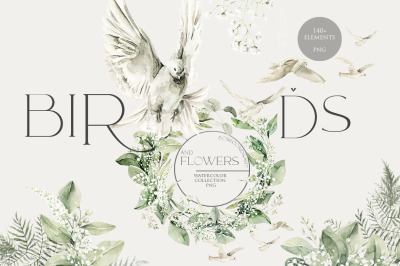 Birds and flowers. Watercolor collection