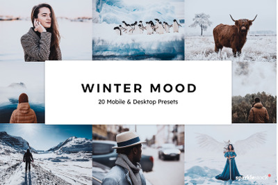 20  Winter Mood LR Presets