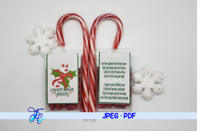 Candy Cane Seeds Tic Tac Label