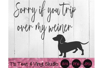 Dachshund Svg, Mini Dachshund, Weiner Dog, Hotdog Dog, Sorry If You Tr