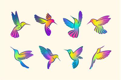 Bright colors colibri hummingbird bird set.