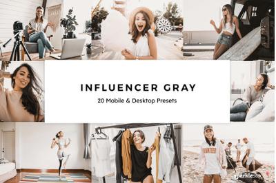 20  Influencer Gray LR Presets