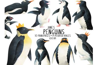 Watercolor Penguin Clipart