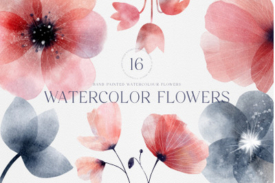 Watercolor Hand Painted Spring Summer Flowers PNG