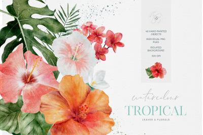 Tropical Watercolour flowers Florals Leaves Watercolor