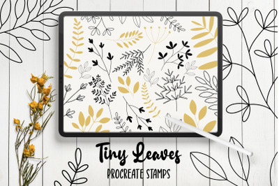 Hand Drawn Leaves Procreate Stamp Brushes