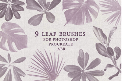 .ABR leaf brushes