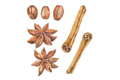 Coffee and spices miniset - watercolor food illustration