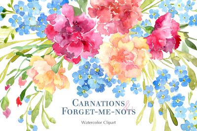 Watercolor Carnations & Forget Me Not Flowers