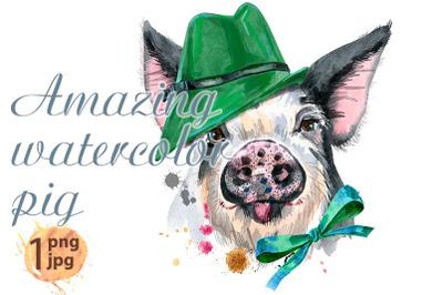 Cute piggy in green hat