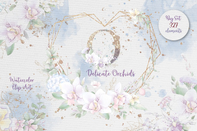 Watercolor flowers Orchids clipart