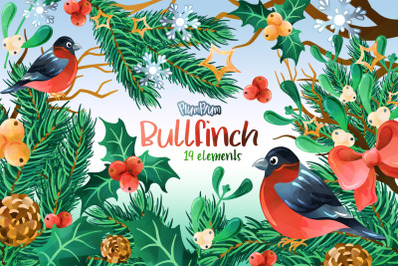 Bullfinch Watercolor Cliparts