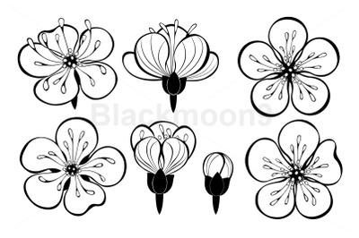 Set of Outline Sakura Flowers