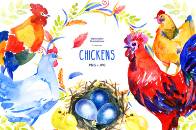 Watercolor chicken clipart