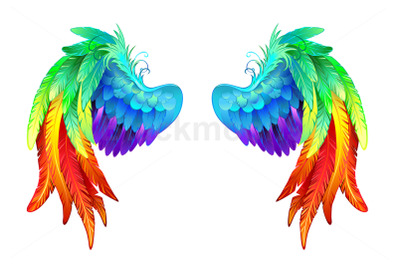 Bright Rainbow Wings