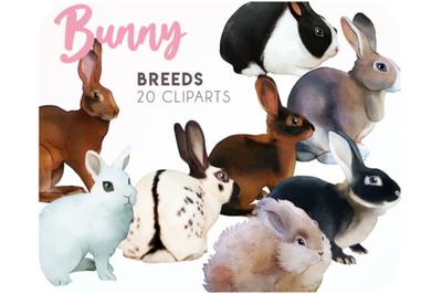 20 Bunny clipart for goodnotes stickers - Rabbit lover gift