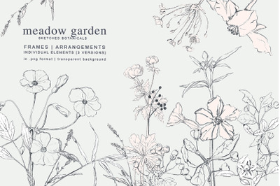 Pencil Sketched Meadow Flowers Collection