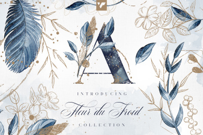 Fleur du Froid Graphic Collection