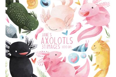 Watercolor Axolotls Clipart
