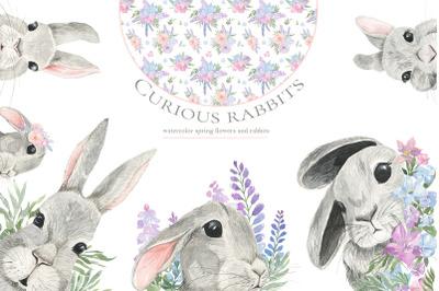 Curious rabbit. Watercolor.