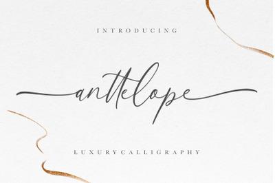Anttelope Luxury Calligraphy
