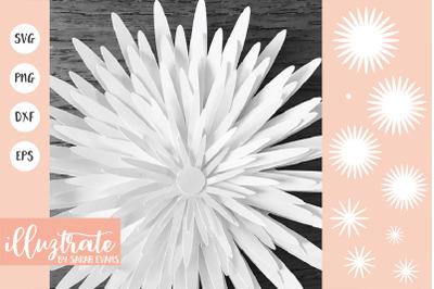 Paper Flower SVG | Paper Cutting Flower SVG | Paper Crafting Flower