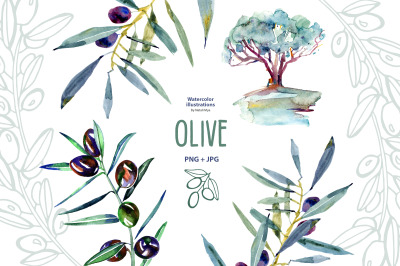 Watercolor greenery olive clipart