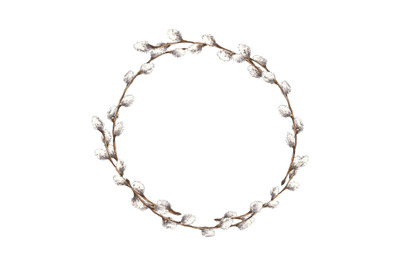 Spring willow branches circle frame (wreath)