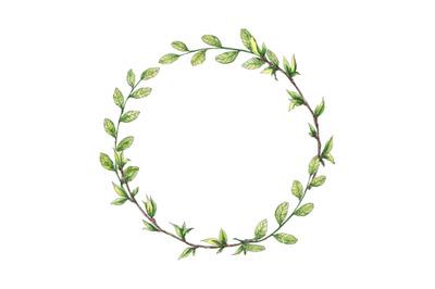 Spring green branches circle frame (wreath)