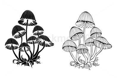 Silhouette Hallucinogenic Mushrooms